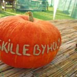 Skilleyholm